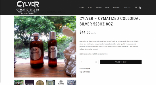 Cylver Website Ecommerce